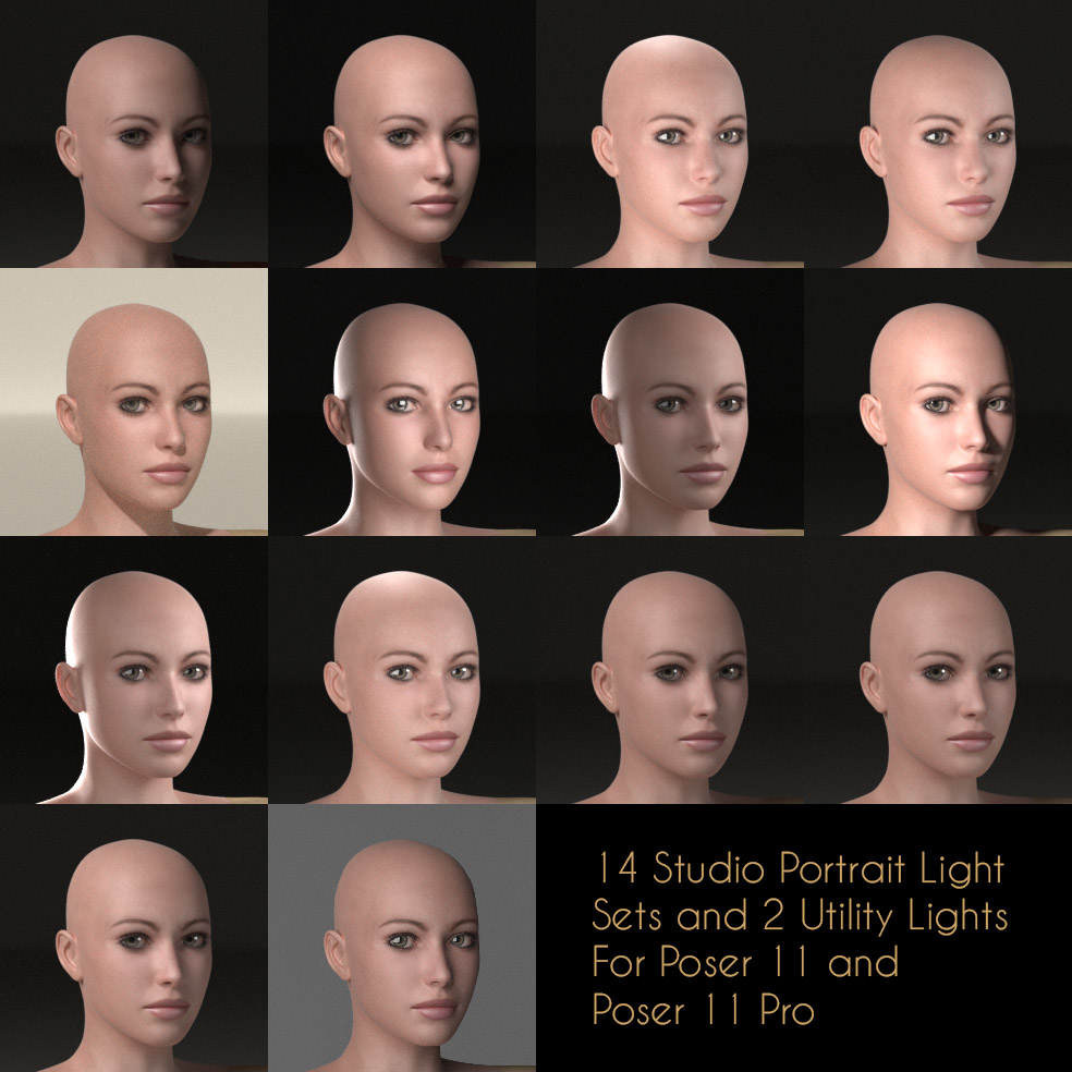 Portrait Lights.jpg